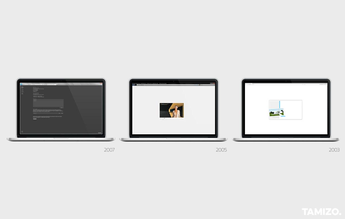 grafika-projekt-identyfikacja-wizualna-tamizo-strona-www-layout-01