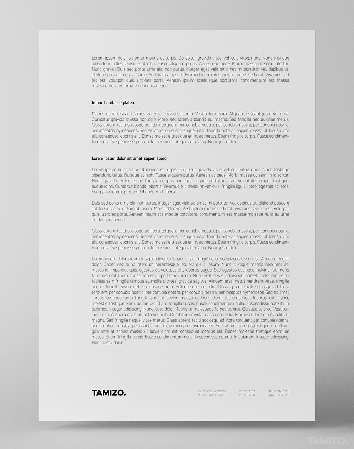 grafika-projekt-identyfikacja-wizualna-tamizo-strona-www-layout-07